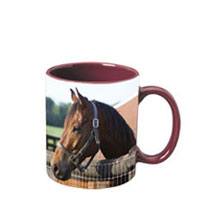 11 oz c-handle mug -  burgundy